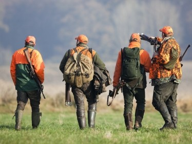 A group of four hunters carrying guns and wearing orange safety clothing. Photo by Bergringfoto / Adobe Stock