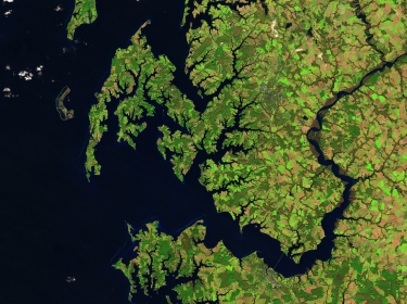 A satellite image of crops in Maryland