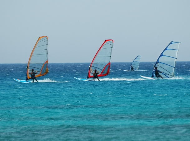 Four people windsurfing