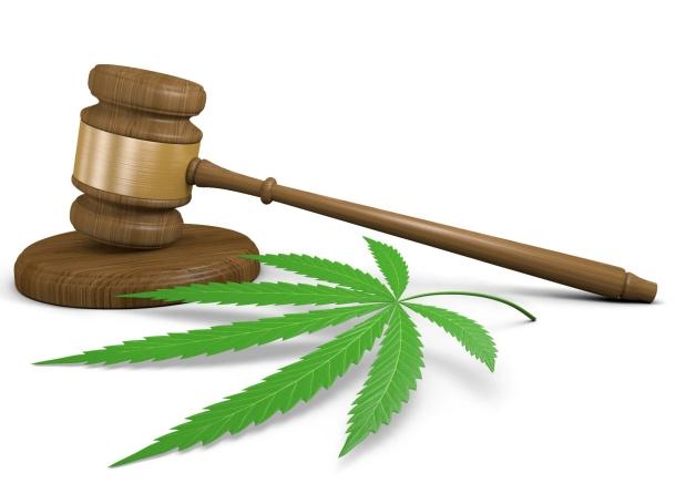 A court gavel next to a cannabis leaf