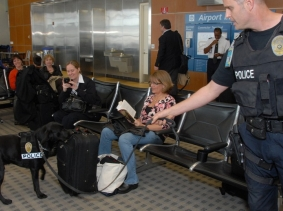 The Harbor Police K-9 Team explosive detection canine perform a search on luggage at San Diego International Airport