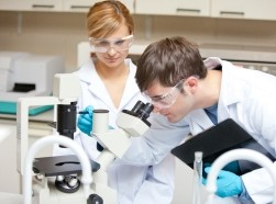 Two doctors observing something with a microscope