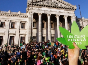 "People participate in the so-called ""last demonstration with illegal marijuana"" in front of the Congress building in Montevideo, Uruguay, December 10, 2013"
