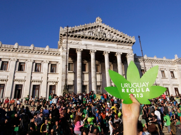 """People participate in the so-called """"last demonstration with illegal marijuana"""" in front of the Congress building in Montevideo, Uruguay, December 10, 2013"""