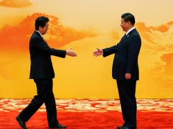 Japan's Prime Minister Shinzo Abe shakes hands with China's President Xi Jinping during a welcoming ceremony of Asia Pacific Economic Cooperation (APEC) forum, in Beijing, November 11, 2014