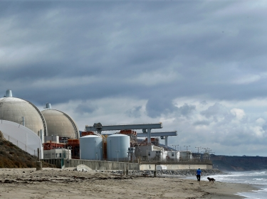 A man walks his dog next to the damaged San Onofre power plant located next to San Onofre State Park in California, November 2012
