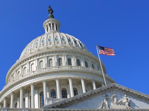 The U.S. Capitol Building, Washington, DC