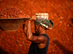 A laborer lifts a basket of crushed bricks at a construction site in Dhaka, Bangladesh, May 22, 2014