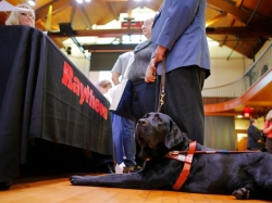 Ricardo Scarello's guide dog Pakse waits while he talks to representatives from Raytheon at the Annual Job Fair for Individuals with Visual Impairments in Cambridge, Massachusetts, October 16, 2014