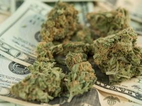 Marijuana on U.S. twenty dollar bills