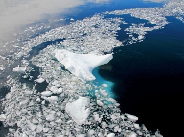 Floating ice and iceberg in Antarctic Peninsula
