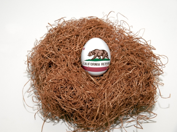 Nest egg with state of California flag painted on the egg