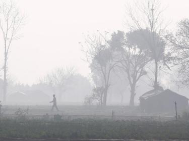 A man walks through a field amidst smog in New Delhi, India, February 7, 2018.