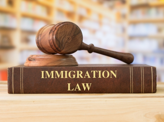 Immigration law book and gavel in a library