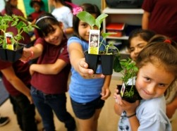 Students in the Munroe Elementary School after-school garden club show off plants they are going to plant in the school's garden in Denver, Colorado, May 9, 2012