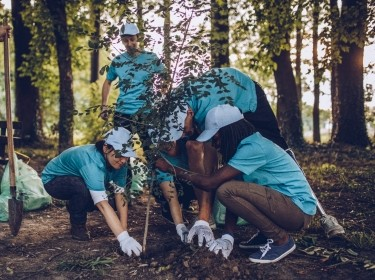 Group of people planting a tree, photo by South_agency/Getty Images