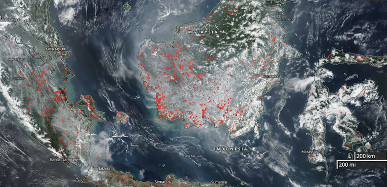 Active fire hotspots detected by S-NPP/VIIRS on September 7, 2019, photo by NASA Worldview/U.S. government image