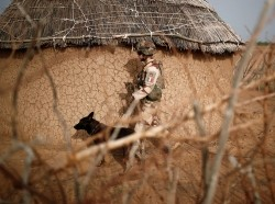 A French soldier uses a sniffer dog to check for explosives during an area control operation in the Gourma region during the Operation Barkhane in Ndaki, Mali, July 29, 2019, photo by Benoit Tessier/Reuters