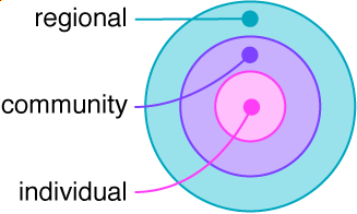 A graphic that shows the individual nested within the community level, which is nested within the regional level.