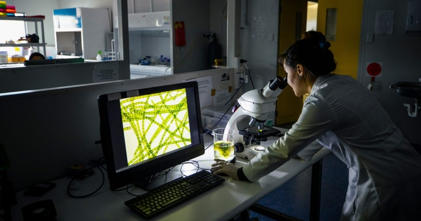 A scientist working late in a laboratory, photo by SolStock/Getty Images