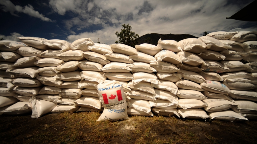 Hundreds of bags of flour delivered to Pakistan