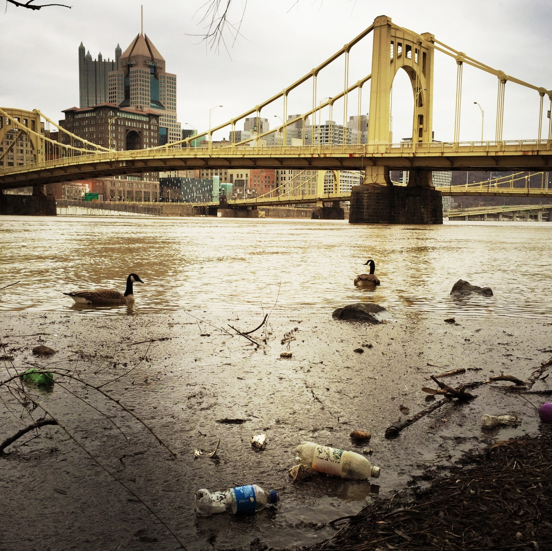 As the snow melts, higher water levels and pollution/trash can be seen on the Allegheny River from the North Shore of the City of Pittsburgh, photo by bgwalker/Getty Images