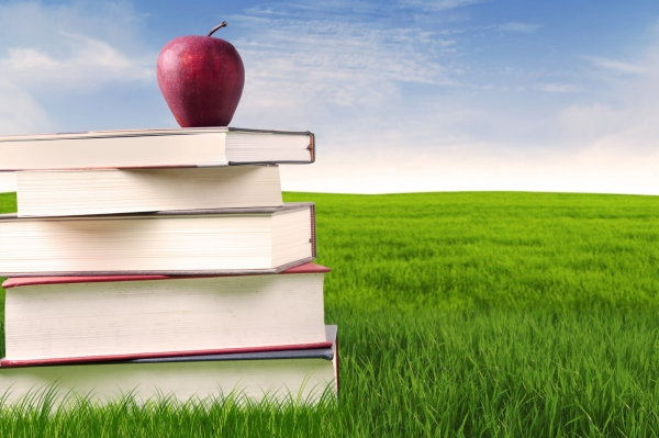 Stack of books and apple on lawn