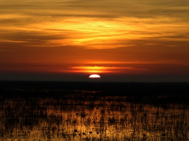 Sunrise over Louisiana wetlands