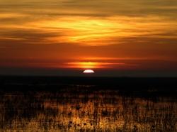 Sunrise over Louisiana wetlands