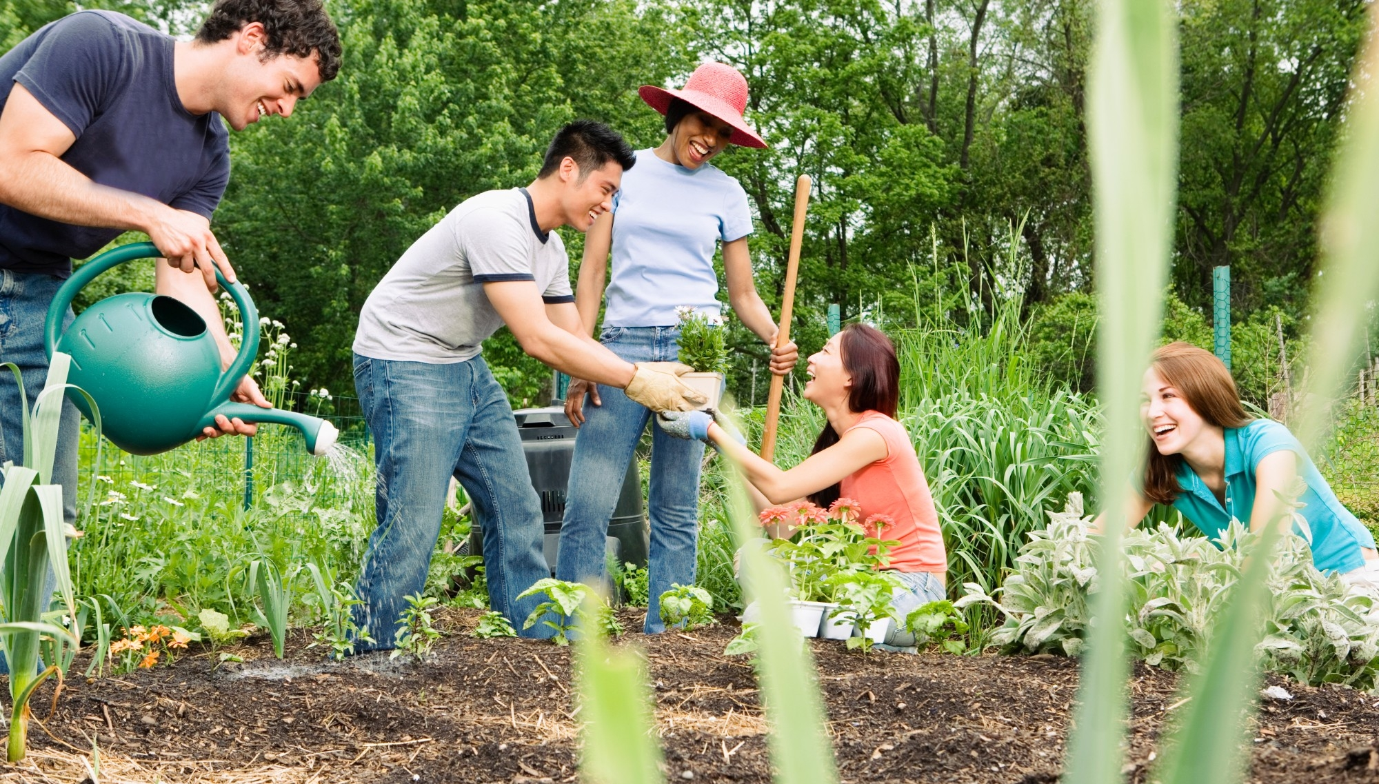 A group planting and watering a community garden