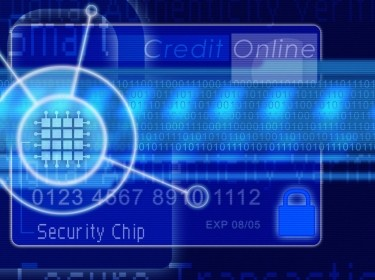 Credit card with computer chip