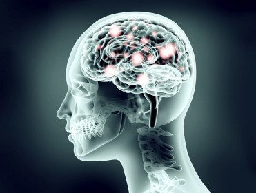 Xray image of human head showing brain pulses