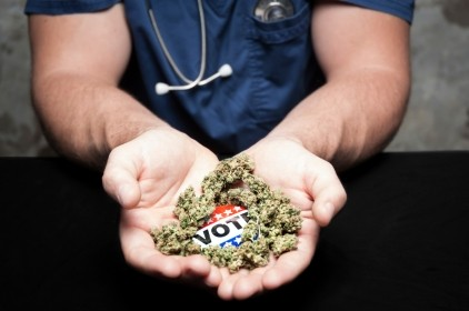 Doctor holding marijuana and a vote button