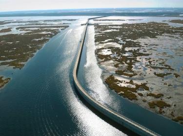 Louisiana coast and levy