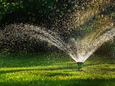 Lawn sprinkler, Gardening Equipment, Sprinkler, spraying water, green grass, Equipment, Hose, Irrigation Equipment, Watering, Horizontal, Freshness, Grass, Green, Lawn, Outdoors, Splashing, Spraying, Sprinkling, Water, Front or Back Yard
