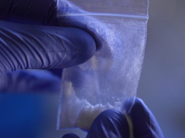 A person wearing blue gloves conducts a forensic analysis of synthetic opioids.