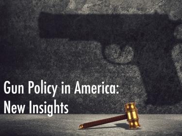 Gun Policy in America New Insights