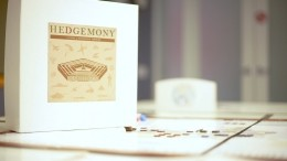 Hedgemony: A Game of Strategic Choices