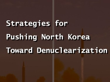 Strategies for Denuclearization