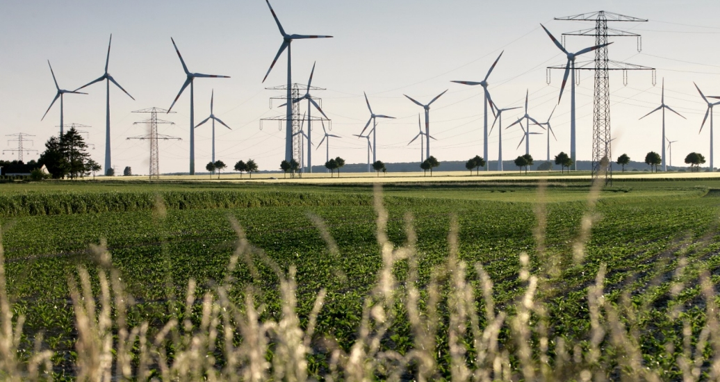 Windmills in field, photo by thomaslerchphoto/Adobe Stock