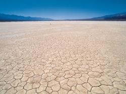parched desert landscape