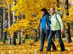 couple walking in a park in autumn