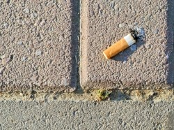 A cigarette butt in the street