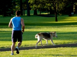 Man jogging with his dog in the park