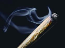 Close up of medical marijuana joint