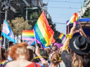 Picture of a crowd of people holding and raising rainbow flags during an LGBT parade, photo by BalkansCat.