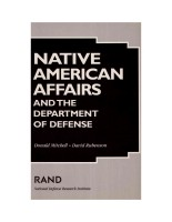Native American Affairs and the Department of Defense