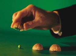 A hand lifting one of three walnut shells to reveal a pea underneath