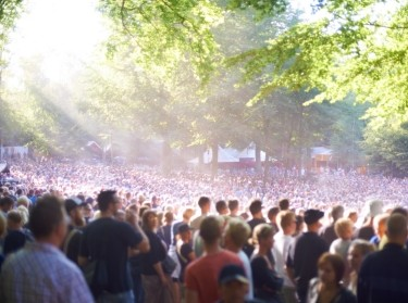 A huge crowd of people under trees on a sunny day