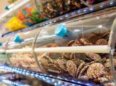 Clear bulk shelves full of candy, photo by Milan Vasicek/Adobe Stock